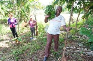 ferme-cmd ferme centre misericorde havane 2019