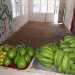 avocats-bananes-fruits de la passion--récolte CMD 2019 ferme finca cuba havane El chico