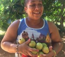 yaneysi -récolte CMD 2019 ferme finca cuba havane El chico