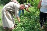 ferme-récolte frére antonio les pelerins de la miséricorde CMD 2019