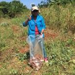 quenia-récolte CMD 2019 ferme finca cuba havane El chico