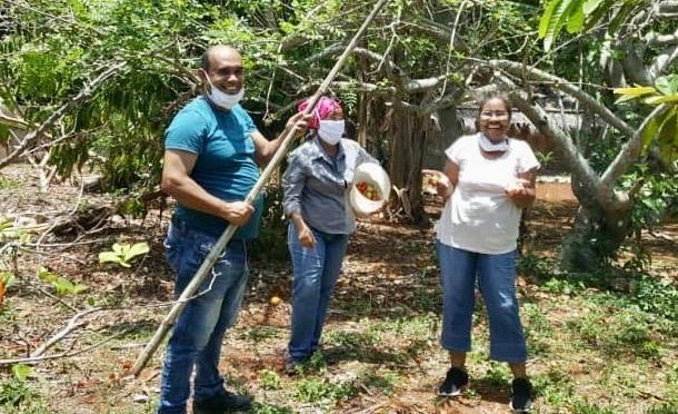 RÉCOLTE DES FRUITS DANS NOTRE EXPLOITATION AGRICOLE DE NOTRE CENTRE MISÉRICORDE DIVINE DE CUBA.